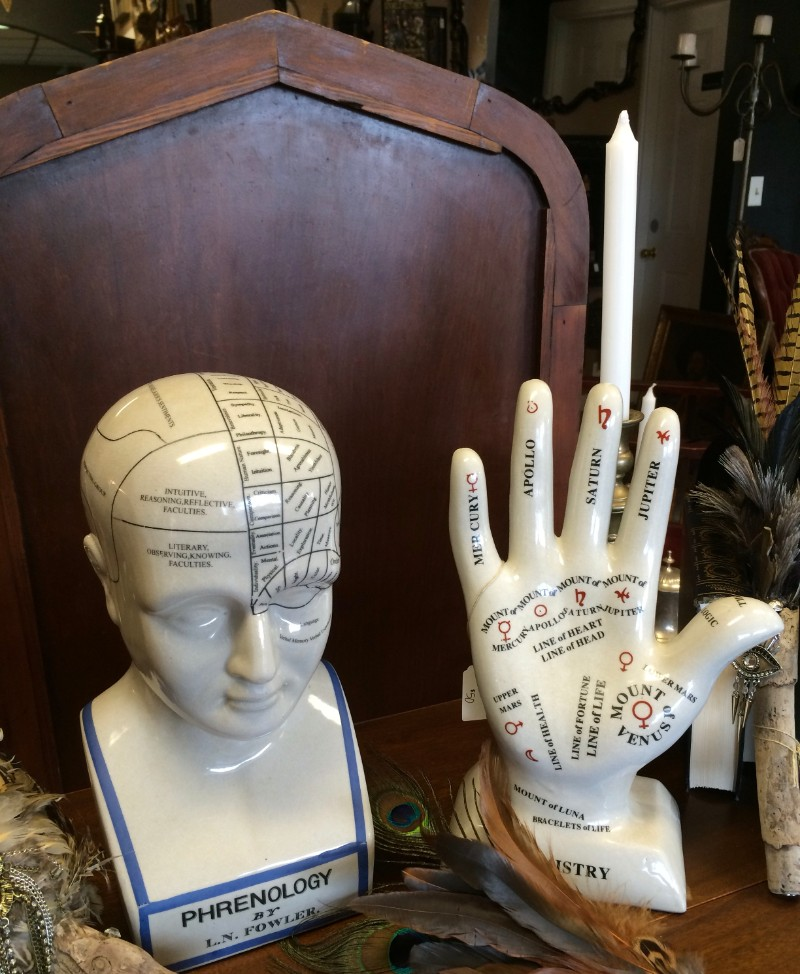 Phrenology head and Palmistry hand at Alchemy and Ashes